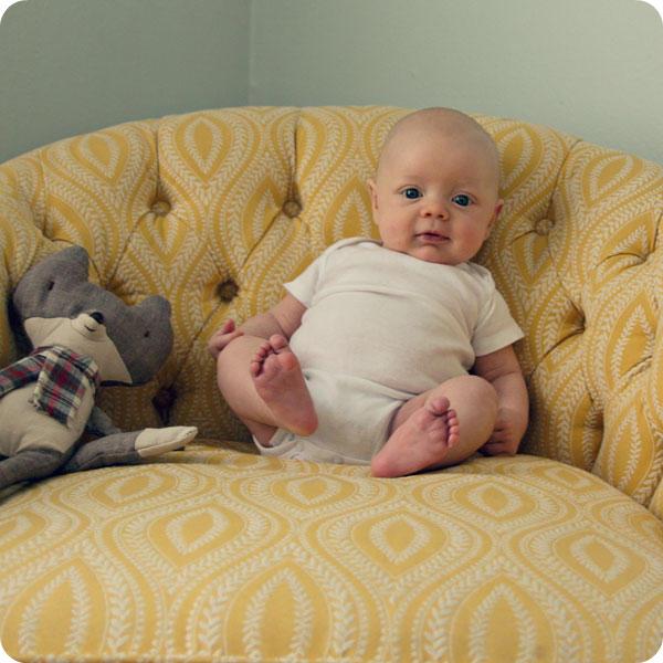 Monthly Baby Photo