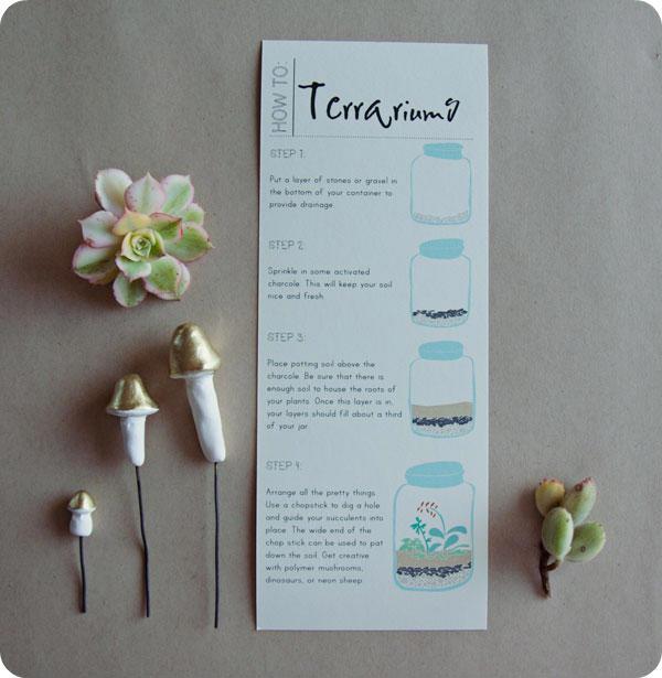 Terrarium Instructions Printable