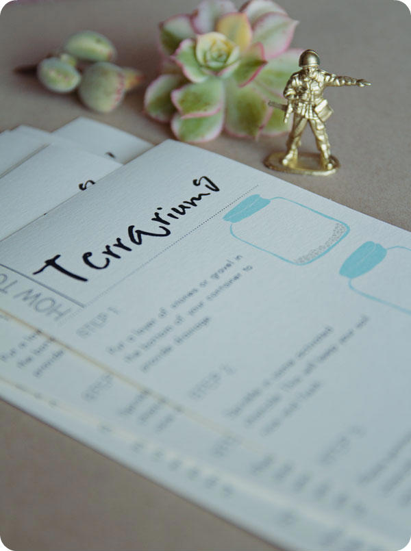 Terrarium How To Printable