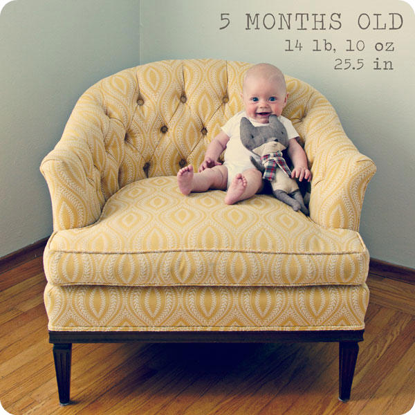 Monthly baby photo idea - Month 5