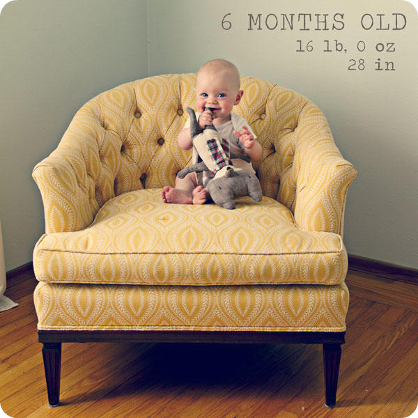 Monthly Baby Photo - 6 months