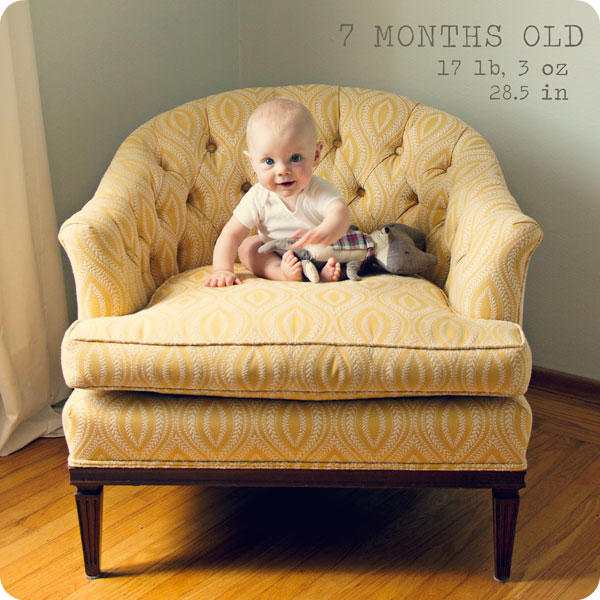 Monthly Baby Photo - 7 months