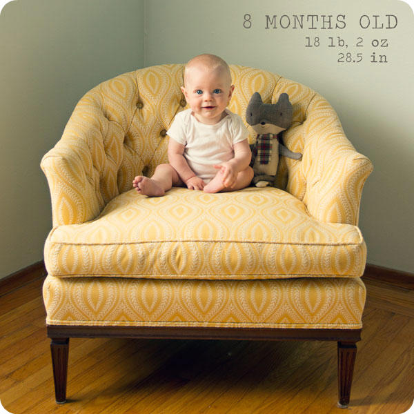 Monthly Baby Photo - 8 months
