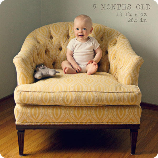 Monthly Baby Photo - 9 months