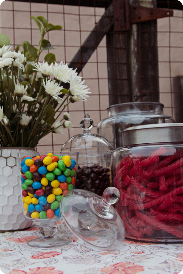 Backyard Movie Party - Candy Bar