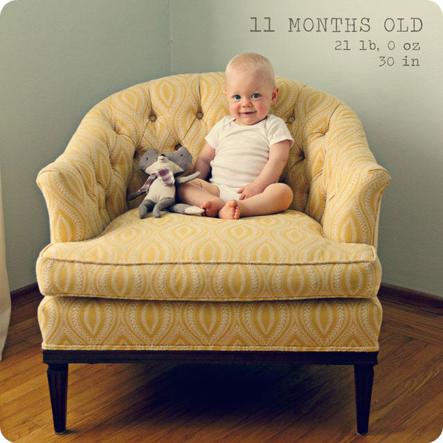 Monthly Baby Photo - 11 months
